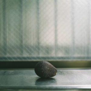 八木香保里・出窓のアボカド