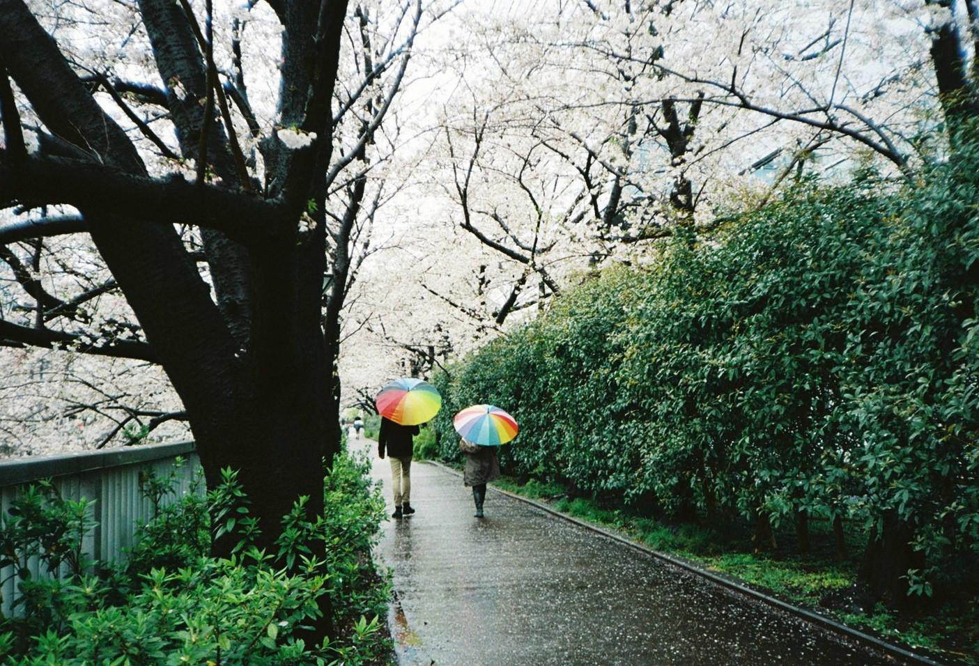 小野﨑由美子・奇跡の一枚