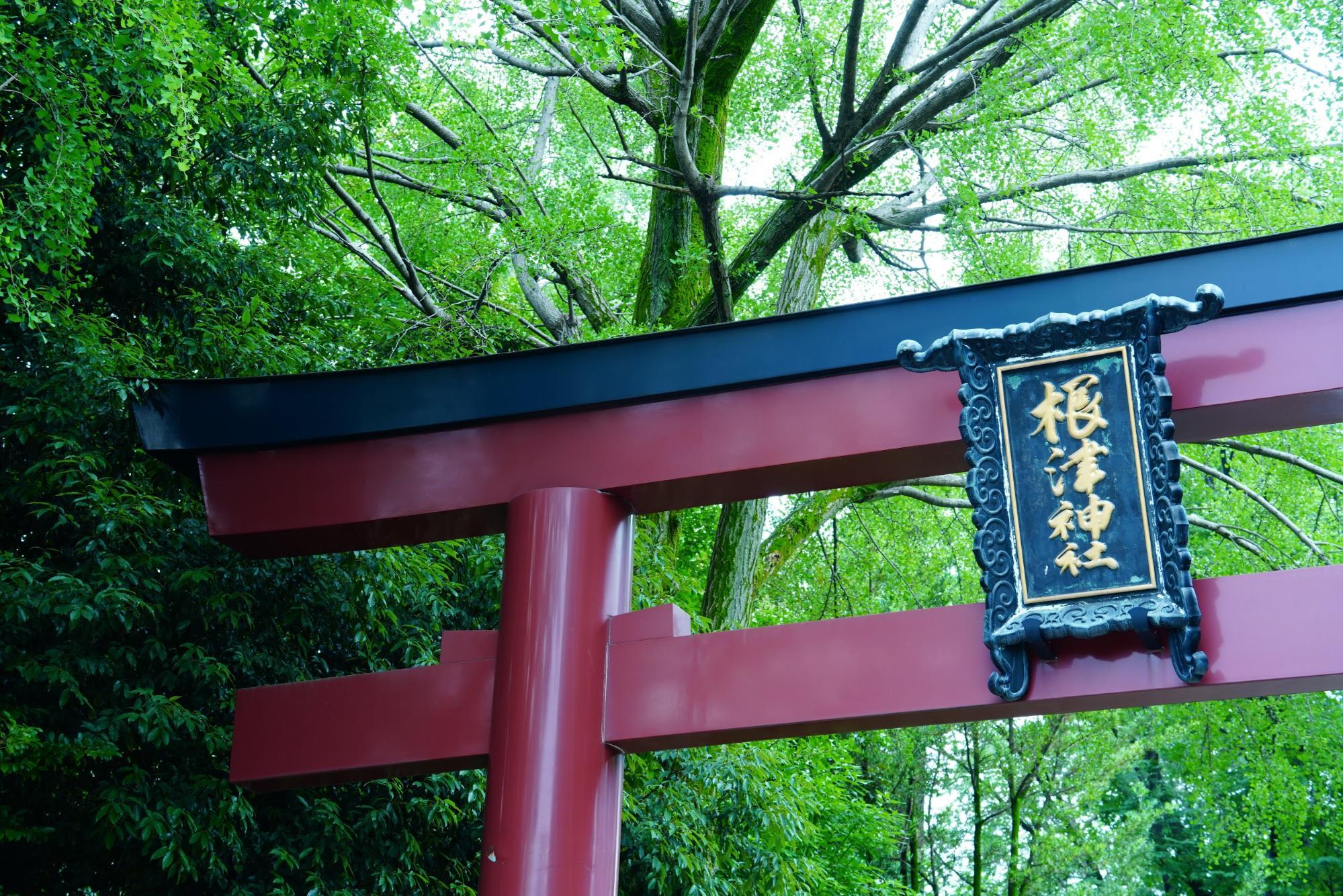 シカノミエ・和の味を楽しむ、根津・千駄木