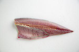 林未佳・さかな屋カメラマン直伝!魚の臭み対策&美味しい魚レシピ