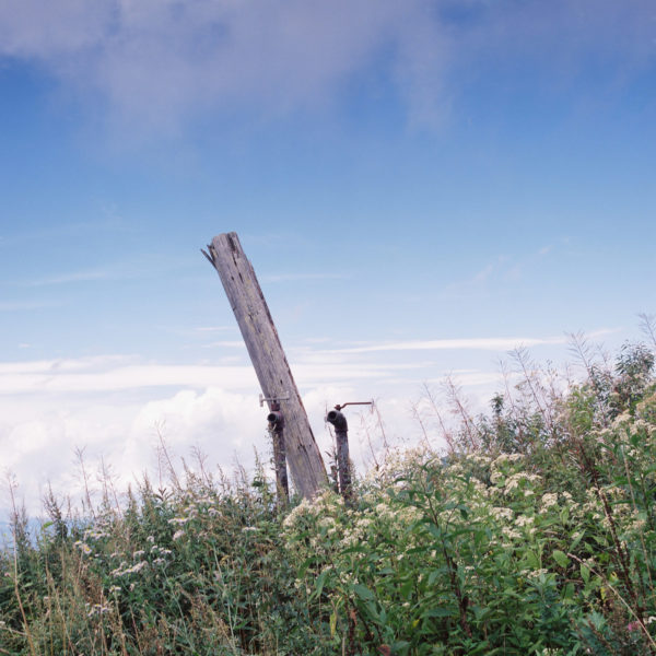 mimi・写真は美しさを教えてくれる〜志賀高原【山で逢えたら】